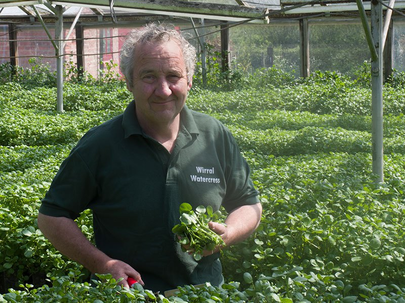 Peter Wirral Watercress